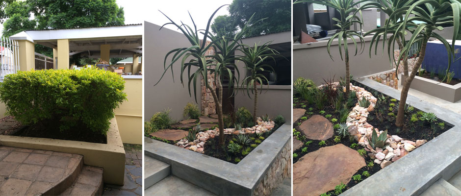 Before and After House Botha